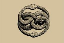 Snake and earrings