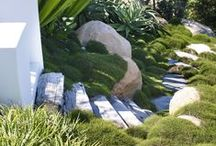 Coogee 1 / Landscape designed by William Dangar 2010