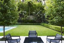 Double Bay 1 / Garden designed by William Dangar 2009.