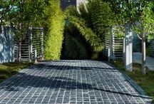 Mosman 3 / Garden designed by William Dangar 2009