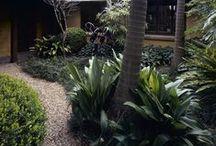 Point Piper 2 / Garden designed by William Dangar 2005