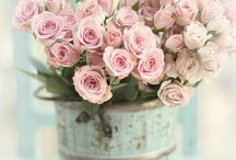 — Flowers —