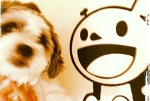 Ollie: much love
