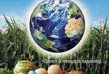 GMO / by Kim Herman