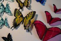 motýle - tvorba