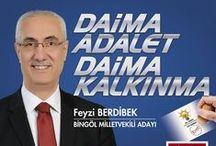 Feyzi Berdibek Bingöl / 25. Dönem Milletvekili Genel Seçimleri AK Parti Bingöl 3. Sıra Milletvekili Adayı