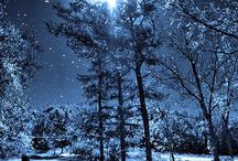 Moonlight & Starlight / Those beautiful wishful lights aglow in the night time sky. Simply breathtaking.