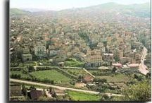Riesi, Sicily and the Island / The Commune de Riesi and other cities and features of Sicily.