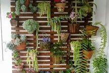 Inspi' jardin