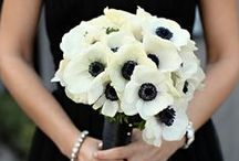Brilliantly Black / Ideas for a black color scheme wedding.