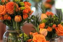 Ornately Orange / Every thing you need for an orange color-themed wedding.