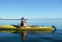 Victoria Waterfront Tours / We are a kayaking tour operator in Victoria BC. We host kayaking tours, lessons and rentals in Victoria's Inner and Outer Harbour.