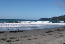 Beaches in Victoria / Victoria and Vancouver Island is be-ribboned with amazing beaches.