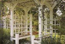 Gardens & Yards / by Sheila Lenz