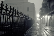 New Orleans. My Someday Home / Because it stole my heart, mosquitos and all. / by Dannaca Patterson