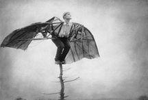 Wings / by Hestia van Wyk