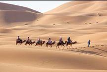 Morocco / My next destination / by Claudia Moreschi