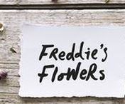 Freddie's Flowers / Brand creation for Freddie's Flowers, the weekly flower delivery service.