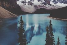 Awaiting adventures / never settle