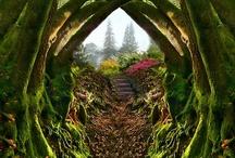 portals / by Caroline
