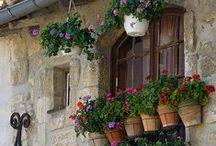 OVET JA IKKUNAT MAAILMALLA / Ovesta yleensä kuljetaan sisään ,ja ikkunasta vilkutetaan.