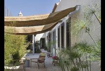 Gardens, patio's & balconies / Gardens