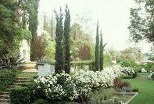 Garden- Puutarha