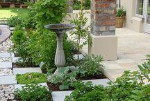 Healing Herbs & Gardening Ideas / Herbsherbsherbsherbsherbsherbsherbsher