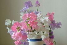 Flowery heaven  x