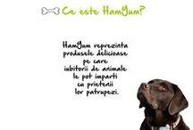 Despre HamYum / Aici vei descoperi povestea produselor HamYum.