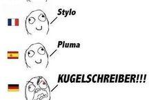 Sprachliche Unterschiede