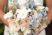 Serenity Blue & Rose Quartz Wedding Theme