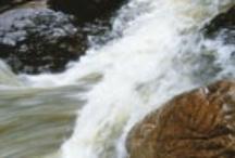 Rio Grande la Magdalena / by ComunidadPlanetaAzul
