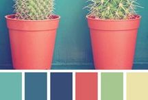 Moodboard & Palette Colour