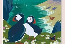 graphics - birds:penguins/puffins  / by Mabel McCracken