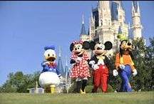 Disney / Disney Vacations