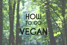 How to be VEGAN • tipps
