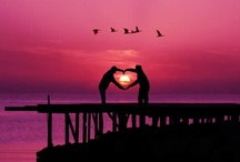 This Much Is True About Love / Love is all we need...... / by Denise Lowe