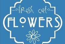 Weddings - Flowers / by Greer