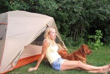 Camping... Maybe
