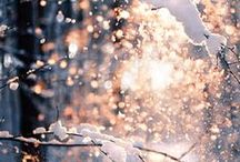 lovely winter