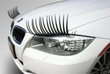 Car Swag /