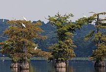 TN State Parks   -   Retire Tennessee