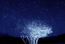 LOVE  IS  BLUE / Blue, blue, my world is blue :: Blue is my world ... ik hou van blauw :: ek hou van blou :: Ich liebe blau :: Amo blu :: I love blue.  / by E l o d i e • S