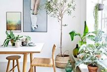 Green and White Interiors / A hint of green adds a freshness to any space, and its oh-so-Scandi!