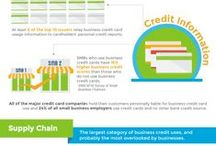 Business Credit Infographics / Business Credit Inforgraphics and Illustrations for small business owners