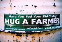 Sweet on Washington Farmers