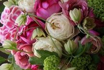 Floral Arrangements / You have to have an imagination to make them this gorgeous / by Joan Hoffman