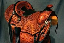 Horses, saddles and other accessories / All things horses
