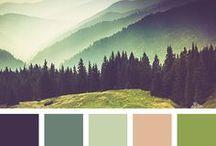 color pallete / Inspiração de como combinar cores